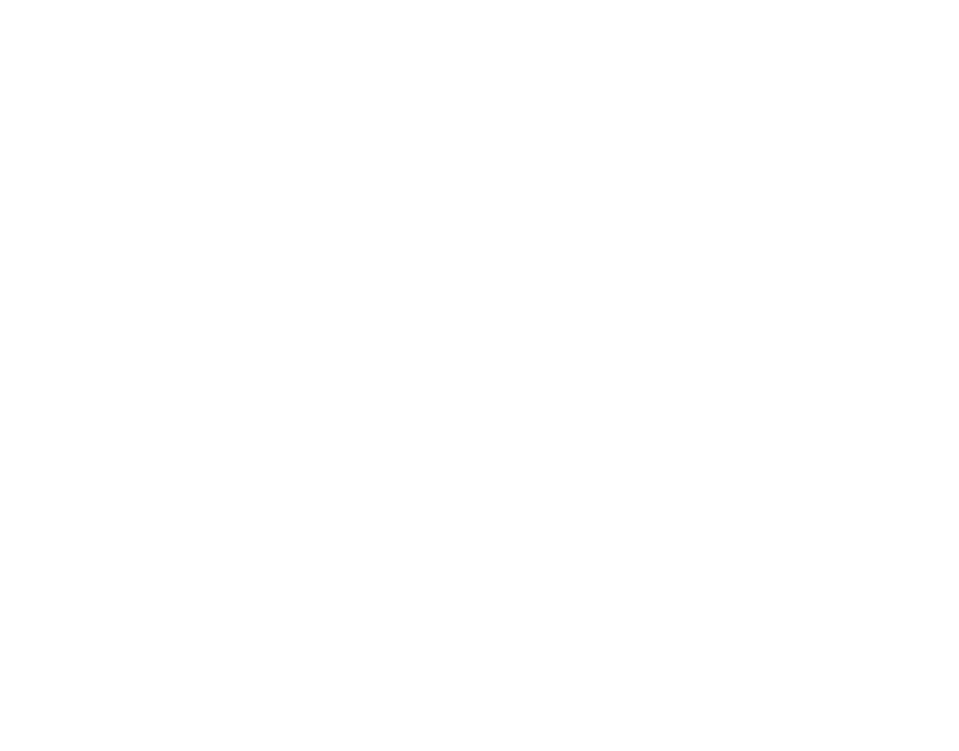 Aviation Engine Combustor Parts